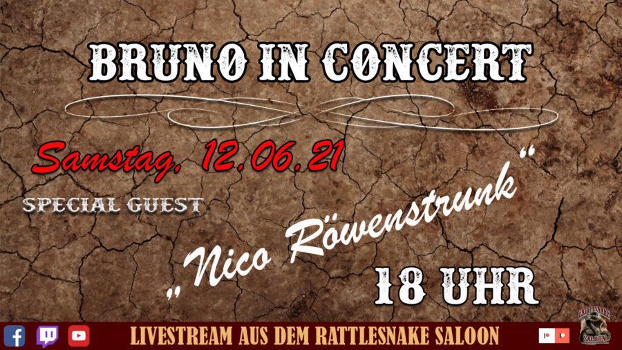 Bruno in Concert Nico 3